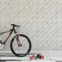 FLO-103-GRA-DB Bike_room_1 1440 x 800