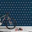 LIF-101-BLU-VE Bike_room_1 1440 x 800