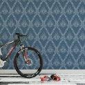 TIA-100-BLU-VE Bike_room_1 1440 x 800