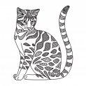 cat_doodle pages_