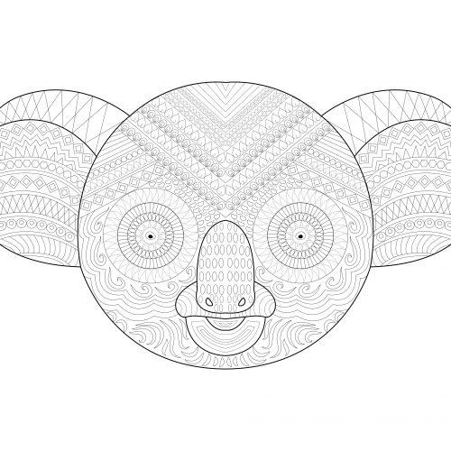 koala_black_white